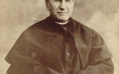 Don Bosco Internship